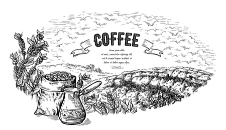coffee plantation landscape bag bush and coffeepot in graphic style hand-drawn vector illustration. Ilustrace