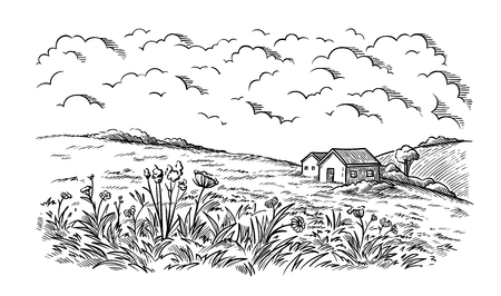 field near the village houses in the background and flowers vector illustration Ilustrace