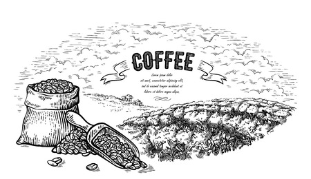 coffee plantation landscape bag bush and scoop in graphic style hand-drawn vector illustration.