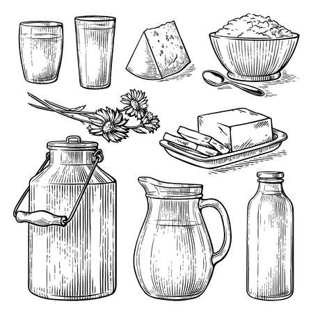 collection items dairy products drawing sketch glass milk bottle iron can cup cheese flowers crumbly curd vector illustration Ilustrace