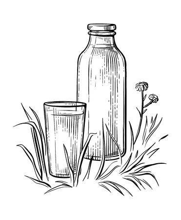 healthy Breakfast drawing sketch glass milk bottle cup vector illustration
