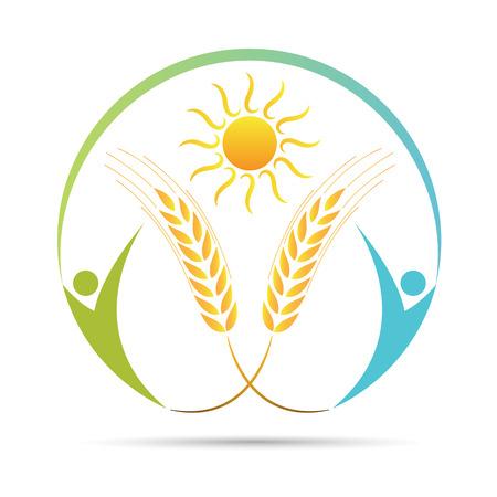 Wheat logo vector design isolated on white background. Stock Illustratie
