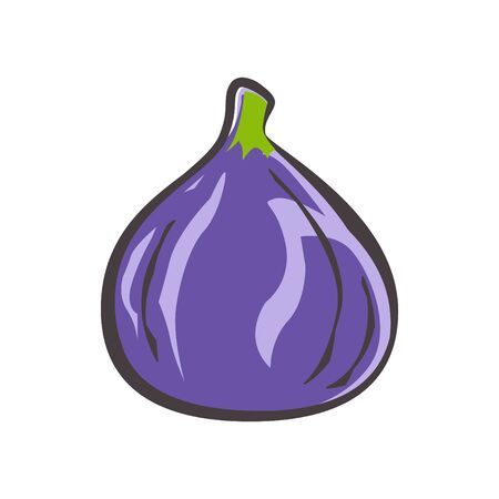 Icône de figue, illustration vectorielle