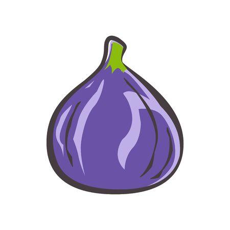 Fig icon, vector illustration