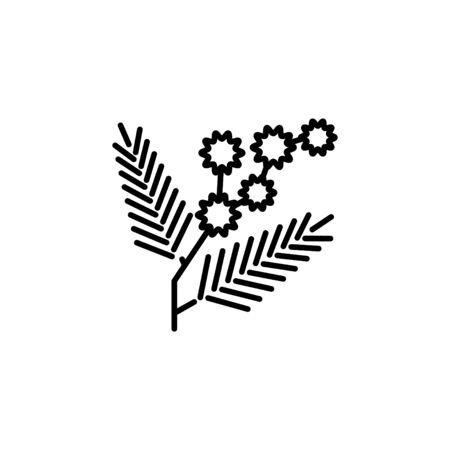 Mimosa icon, vector line illustration