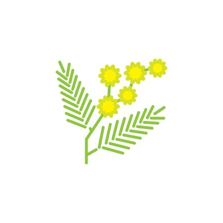 Mimosa icon, vector line illustration