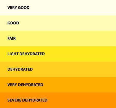 Urine color, Dehydration Urine Color Chart, vector illustration