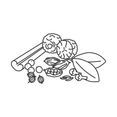 Garam masala icon, vector illustration Çizim
