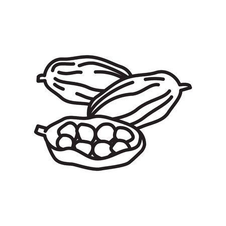 Cardamom icon, vector line illustration