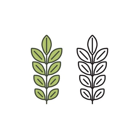 Curry tree icon, curry leaf icon, vector illustration
