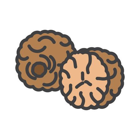 Nutmeg icon, vector line illustration