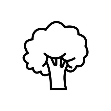 broccoli icon, vector illustration