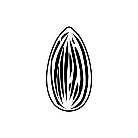 Almond icon, vector illustration Illustration