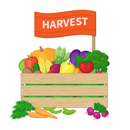 autumn vegetables: Harvest in a wooden box with the inscription on the label. Crate with autumn vegetables. Fresh Organic food from the farm. Vector illustration of the autumn harvest isolated on white background.