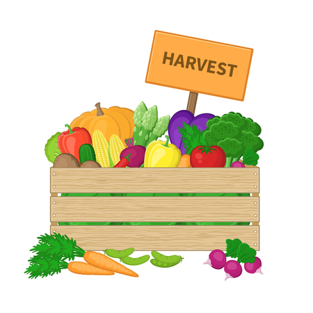 basket icon: Harvest in a wooden box with board. Crate with autumn vegetables. Fresh Organic food from the farm. Vector colorful illustration of the autumn harvest isolated on white background.