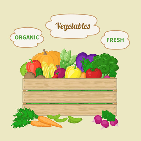basket icon: Vegetables mixed in a wooden box. Crate with autumn vegetables. Illustration