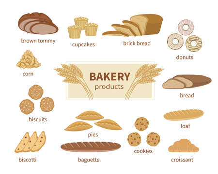Bakery products, fresh bread and pastry. Food Collection and shop elements of sliced loaf, french baguette, rye bread, wheat branch, croissant, muffins, biscotti, biscuits, cookie, pies, donuts.Vector Standard-Bild - 152108821