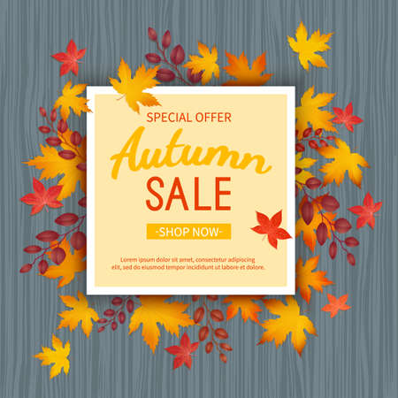 Autumn sale banner. Special seasonal discount offer. leaves at rectangular frame on a wooden table. Vector illustration. Top view