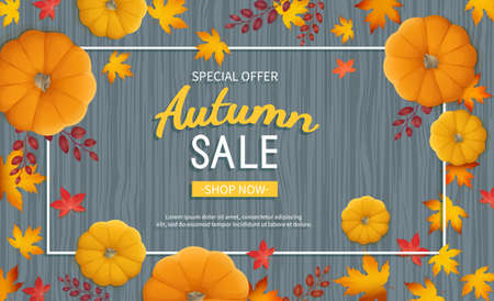 Autumn sale banner. Horizontal background with pumpkin, leaves at rectangular frame on a wooden table. Special seasonal discount offer. Vector illustration. Top view