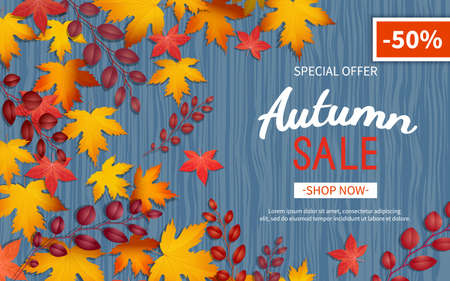 Autumn discount flyer. Special offer, big seasonal sale, great discounts. Horizontal banner with yellow and red leaves. Vector illustration. Top view Illustration