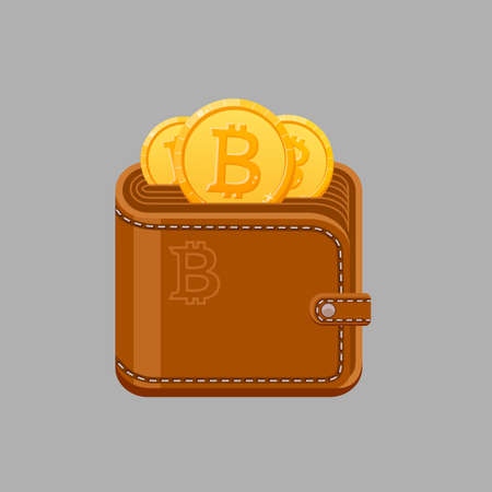 Brown bitcoin wallet with cash gold coins. Isolated vector illustration.