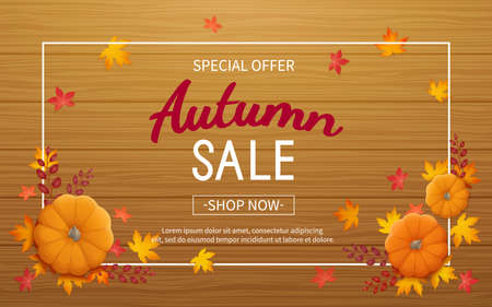Autumn sale background. Horizontal banner flyer in a rectangular frame with pumpkin, leaves on a wooden table. Special seasonal offer. Vector illustration. Top view Standard-Bild - 155410455