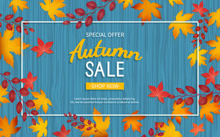 Autumn discount flyer. Special offer, big seasonal sale, great discounts. Horizontal banner with yellow and red leaves in a rectangular frame. Vector illustration. Top view