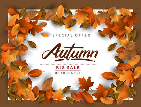 Autumn Sale Background, Hand Drawn Autumn calligraphy with falling leaves, Web Banner, shopping sale or seasonal poster, Postcard and Invitation card. Vector illustration