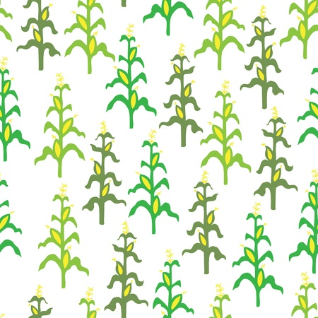Seamless retro corn field pattern Vector