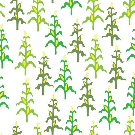 planta de maiz: Sin fisuras retro patrón del campo de maíz Vectores