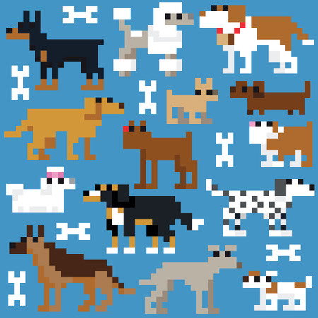 border collie: Seamless retro pixel dog pattern Illustration