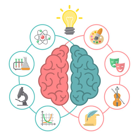 Conceptual flat illustration of left and right hemispheres of the brain and different icons of the logical and creative activities