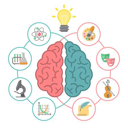 Ilustración plana conceptual de los hemisferios izquierdo y derecho del cerebro y los diferentes iconos de las actividades lógicas y creativas