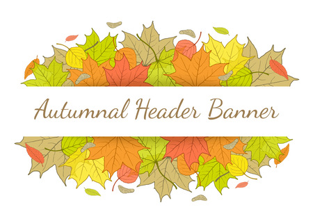 fallen: Autumn header banner with hand drawn fallen leaves.