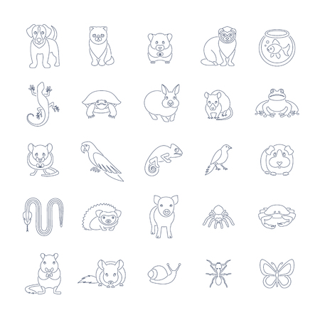 Animals pets vector flat thin line icons set. Outline pictograms of various domestic animals. Mammals, rodents, amphibian, insects, birds, reptiles, which people take care of at home