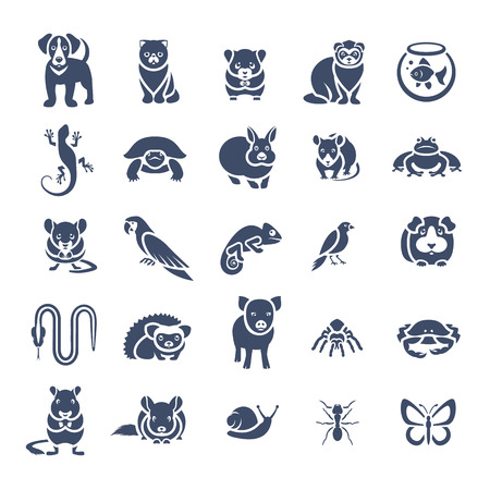 Animals pets vector flat silhouette icons set. Monochrome  pictograms of various domestic animals. Mammals, rodents, amphibian, insects, birds, reptiles, which people take care of at home Imagens - 50917803