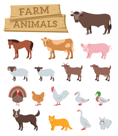 Domestic farm animals flat vector icons set. Colorful illustrations of large and small cattle, domestic birds and pets. Farming infographic elements. Cartoon educational clip art. Isolated on white