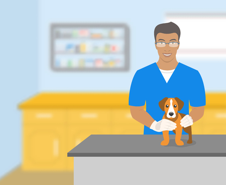 american table: Young smiling veterinarian African American man holding a dog at a table in veterinary office. Vector flat illustration. Pets health care horizontal banner. Veterinary cartoon concept