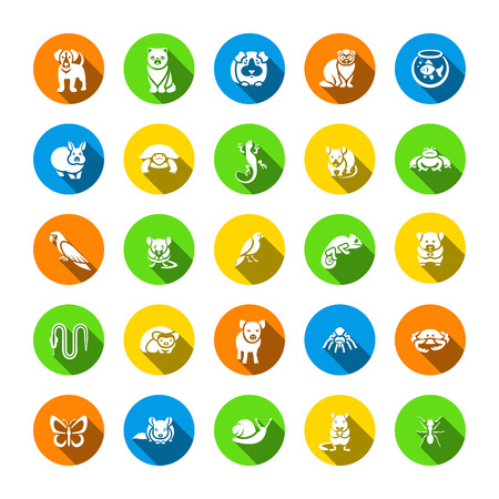 Animals pets vector flat silhouettes round icons set. Colorful pictograms of various domestic animals. Mammals, rodents, amphibian, insects, birds, reptiles, which people take care of at home Illustration