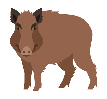 cartoon adult: Cute smiling boar vector cartoon illustration. Wild pig zoo animal icon. Big brown adult hog standing. Isolated on white. Forest fauna childish character. Simple flat design element Illustration