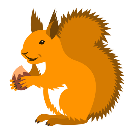 red animal: Cute smiling red squirrel holding nut. Vector cartoon illustration. Wild zoo animal icon. Fluffy ginger adult rodent standing with hazelnut. Isolated on white. Forest fauna childish character