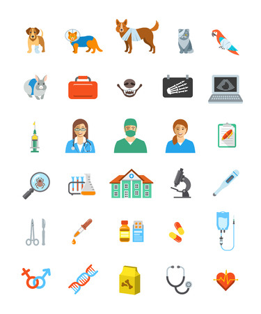 bandaging: Vet clinic services vector icons.