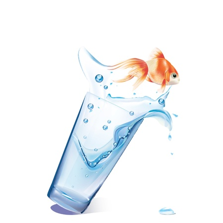 goldfish jump: gold fish jumping from glass  vector Illustration