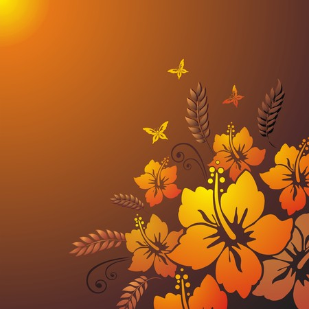 Hibiscus. Floral background.  Vector