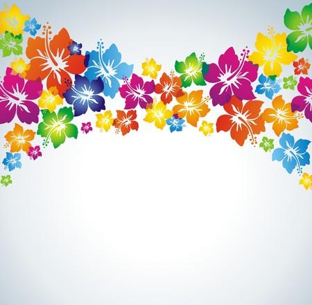 hawai: Hibiscus. Fondo multicolor.