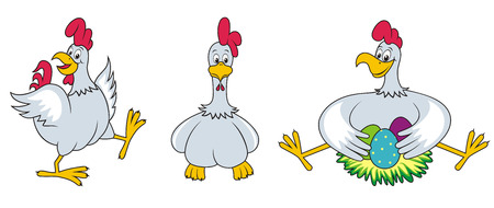 Chicken . Stock Vector - 8082116