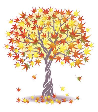 Maple Tree. Vektorové ilustrace
