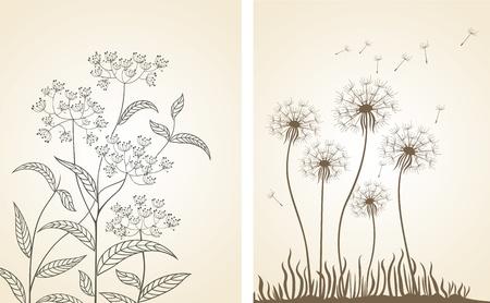 Floral design. Set. Vector