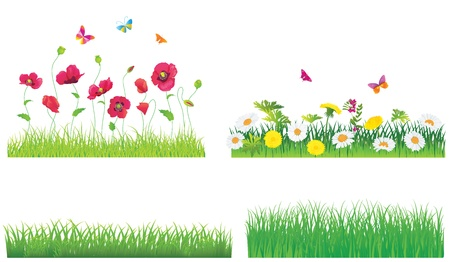 The Green Grass and Flowers  Set  Vector