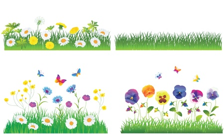 The Green Grass and Flowers. Vector Set. Stock Vector - 14810364